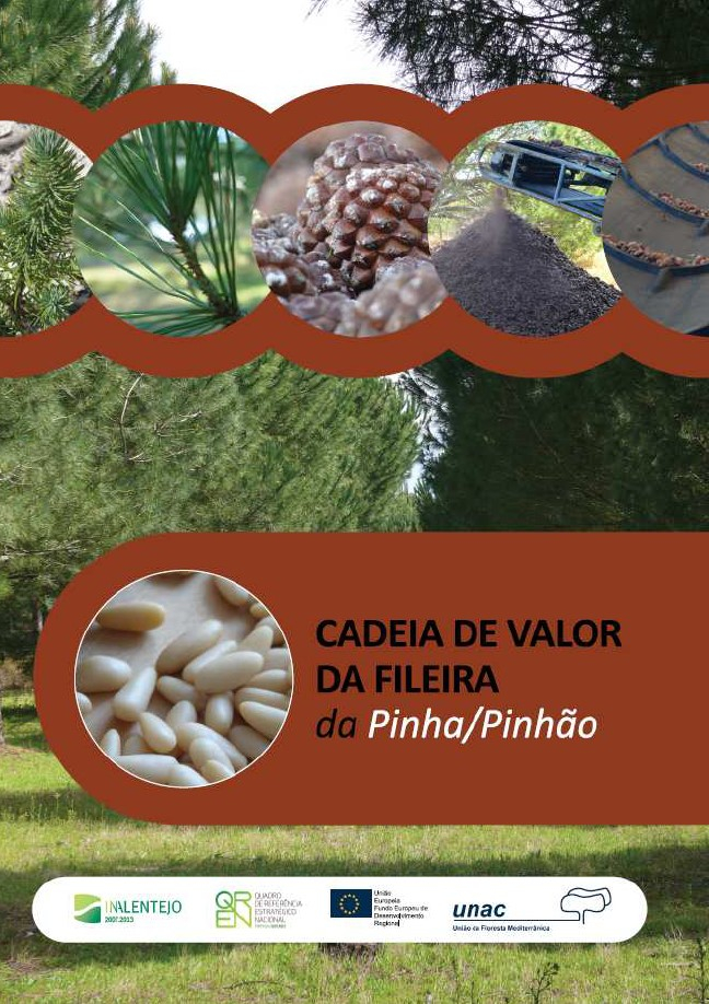 Cadeia de Valor da Fileira da Pinha/Pinhão
