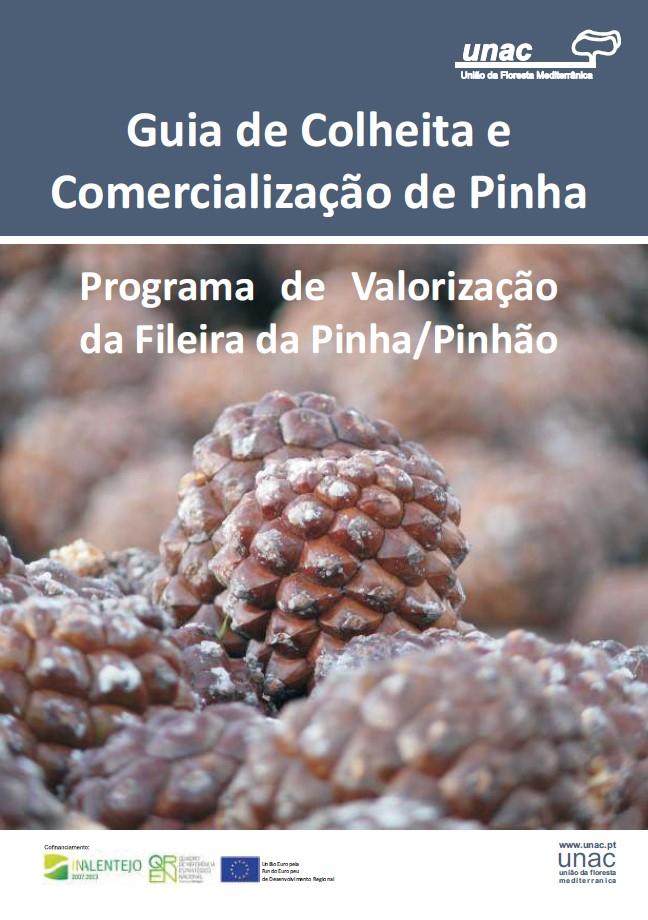 Guia de Colheita e Comercialização de Pinha