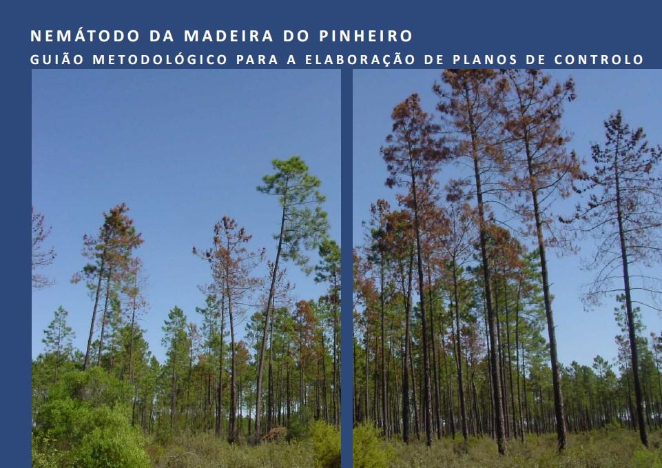 Guião Metodológico para Elaboração de Planos de Controlo de Nemátodo da Madeira do Pinheiro